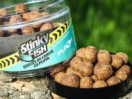 BOILIES FLASH CRITIC ECHILIBRATE STINKY FISH 16/20MM 250 GR